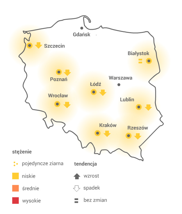 Mapa pylenia olszy /Grafika RMF FM /
