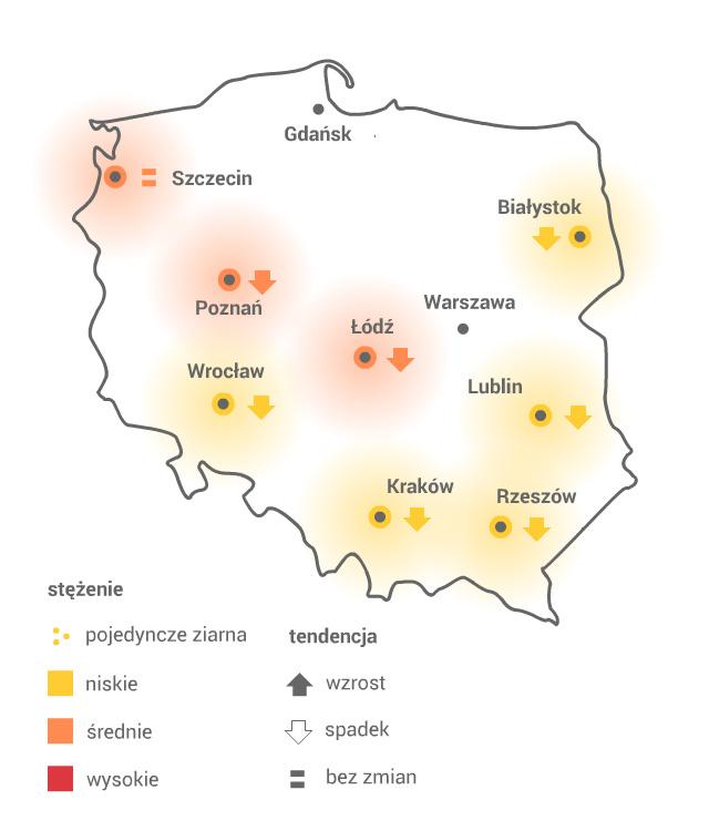 Mapa pylenia wierzby /Grafika RMF FM /