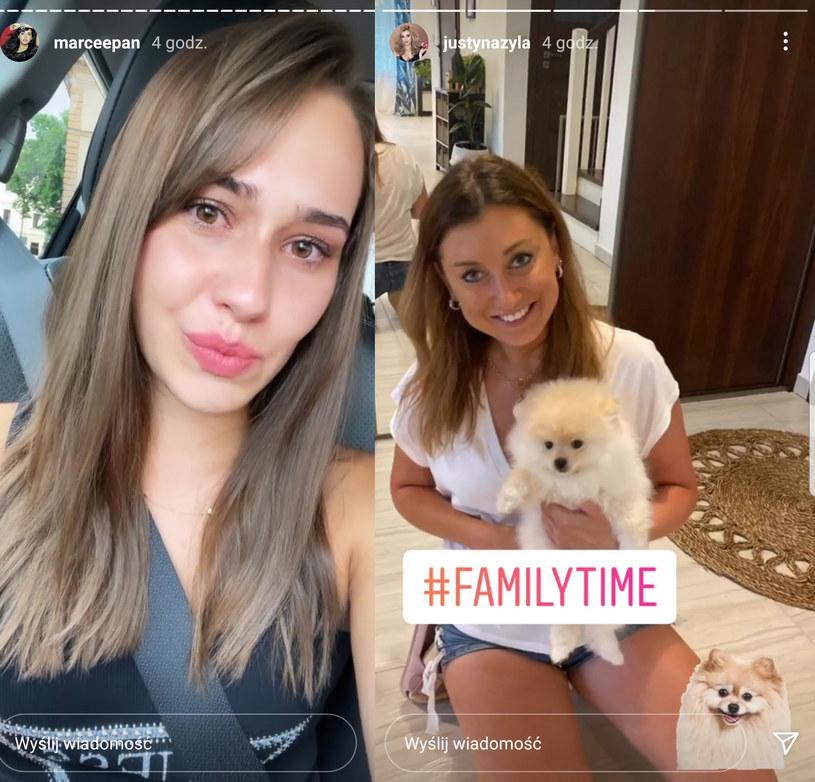 Marcelina Ziętek zalała się łzami. Justyna Żyła ma takiego samego psa jak ma ona /Instagram