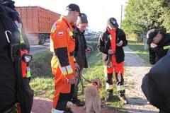 Marcina znalazł pies. Zobacz zdjęcia z akcji poszukiwawczej