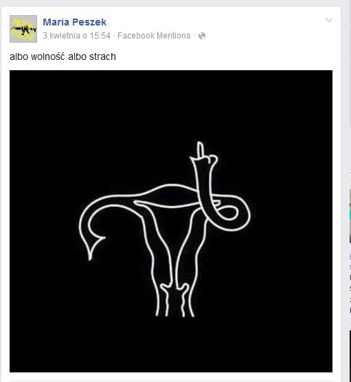 Maria Peszek na Facebooku /