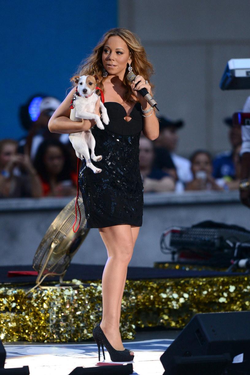 Mariah Carey nie szczędzi pieniędzy na swoich pupili /Bryan Bedder /Getty Images