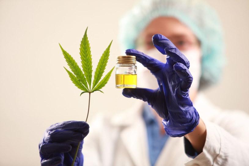 Marihuana jest niebezpieczna dla osób cierpiących na COVID-19 /123RF/PICSEL