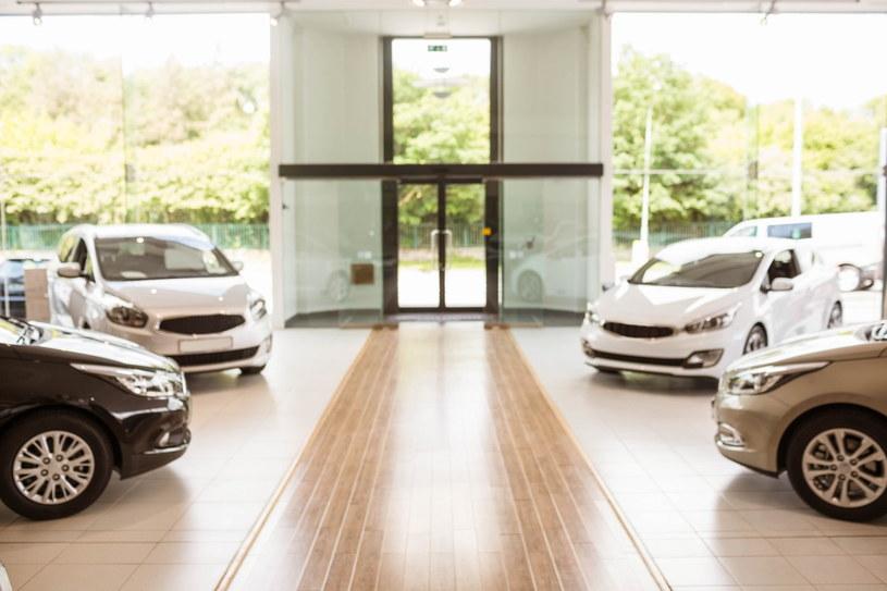 Marka Audi jest jednym z najczęściej wybieranych samochodów przez młodych kierowców /Adobe Stock