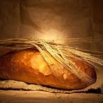 """Marnujemy coraz więcej pieczywa. """"Ludzie palą suchym chlebem w piecach"""""""