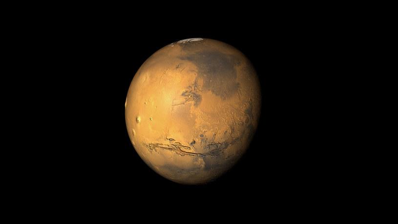 Mars wkrótce zostanie skolonizowany? /123RF/PICSEL