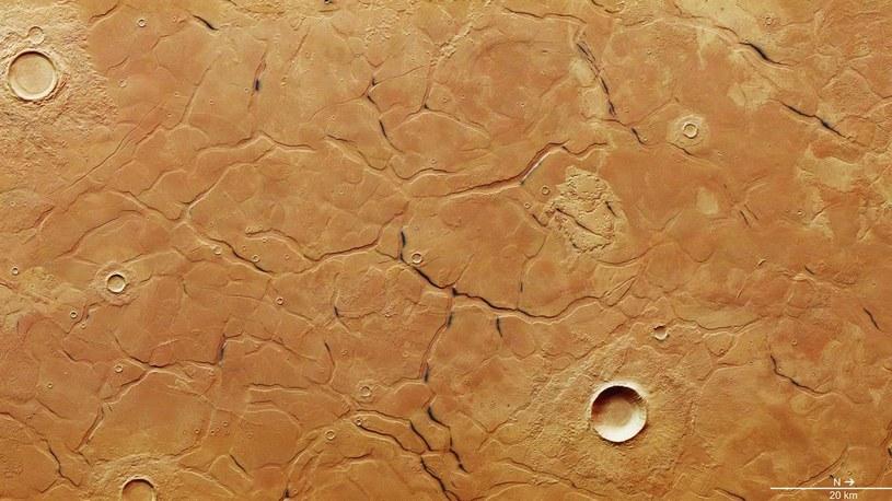 Marsjański labirynt /materiały prasowe