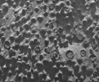 Marsjańskie jagody - niezwykłe znalezisko łazika Opportunity