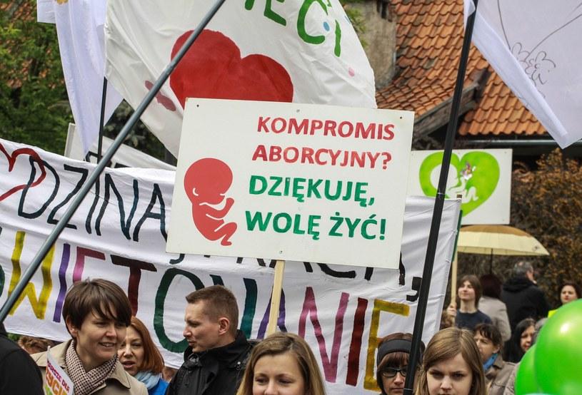 Marsz przeciwników aborcji, zdj. ilustracyjne /Artur Szczepański /Reporter