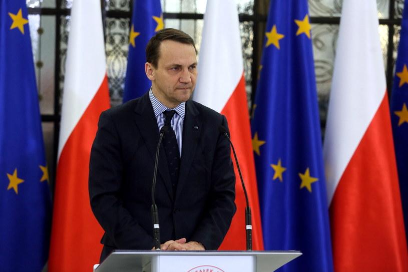 Marszałek Sejmu Radosław Sikorski podczas konferencji prasowej /Tomasz Gzell /PAP