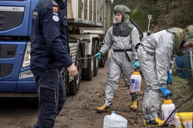 Martwe norki są grzebane na specjalnie zabezpieczonych terenach wojskowych /MORTEN STRICKER /PAP/EPA