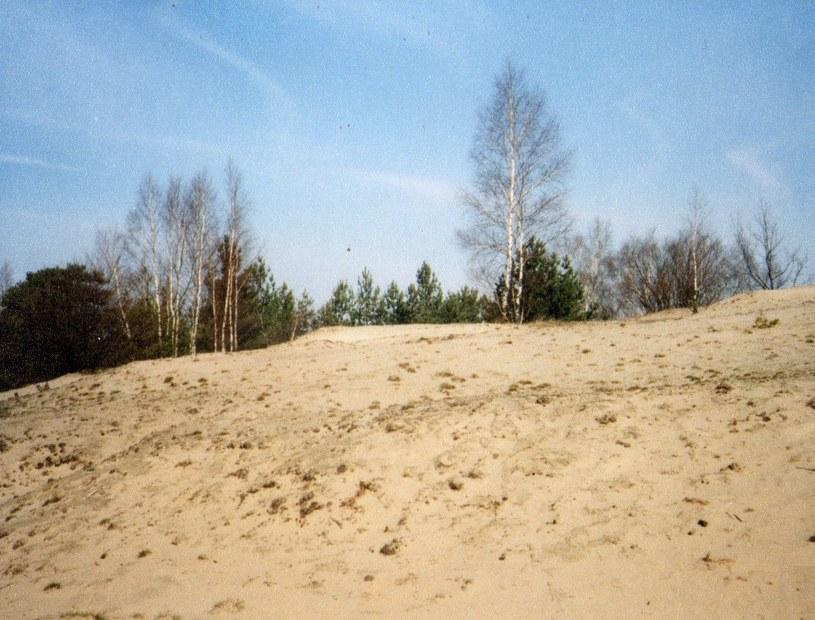 Marzec 1998 r. Jedna z nielicznych, niezalesionych wydm w południowo-zachodniej części pustyni. /Odkrywca