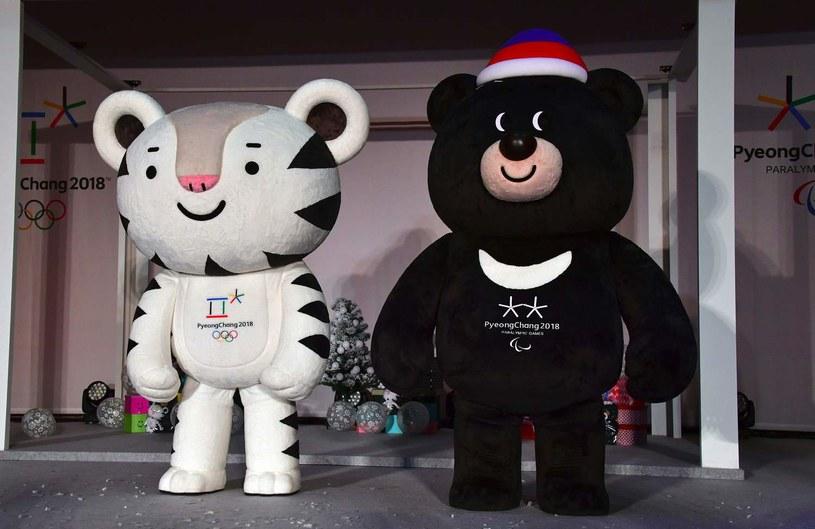Maskotki igrzysk olimpijskich w Pjongczangu /AFP
