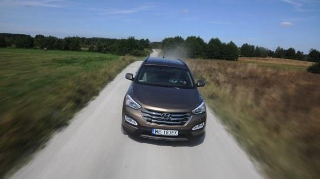 Masywny przód Hyundaia z seryjnymi w odmianie Executive ksenonami oraz LED-ami do jazdy dziennej. /Motor