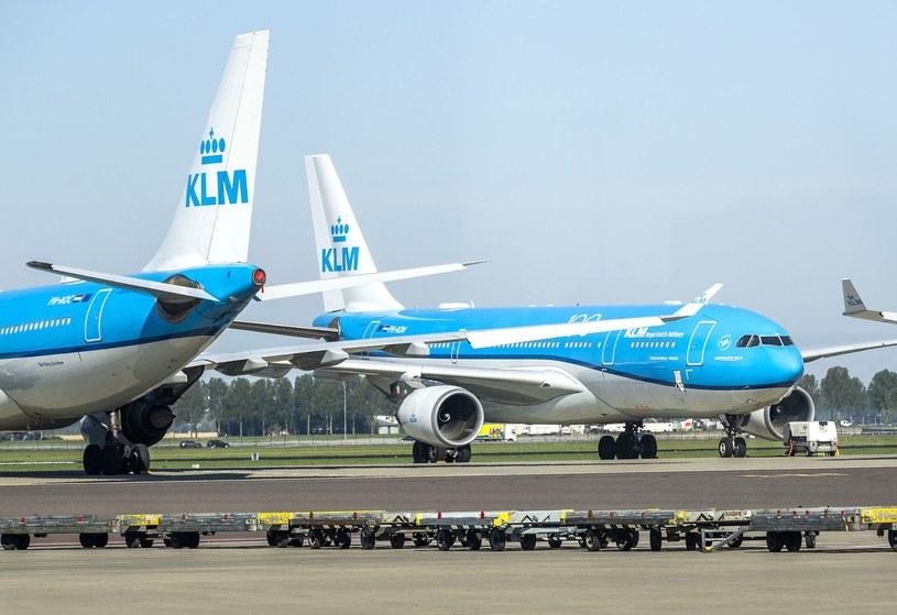 Maszyny KLM na lotnisku Schiphol pod Amsterdamem /AFP