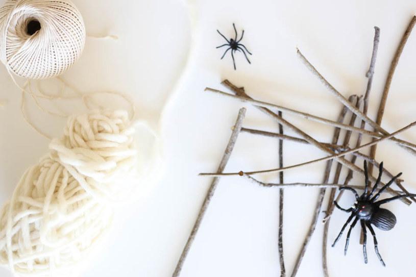 materiały na halloween /© Photogenica