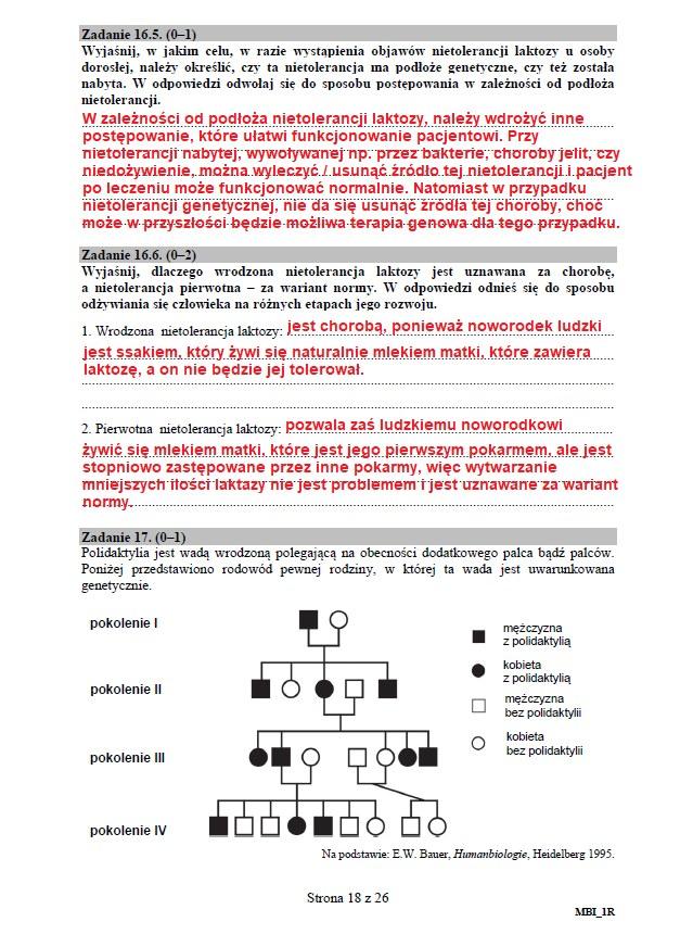 Matura 2020: Biologia - arkusz CKE i odpowiedzi, strona 18 /INTERIA.PL