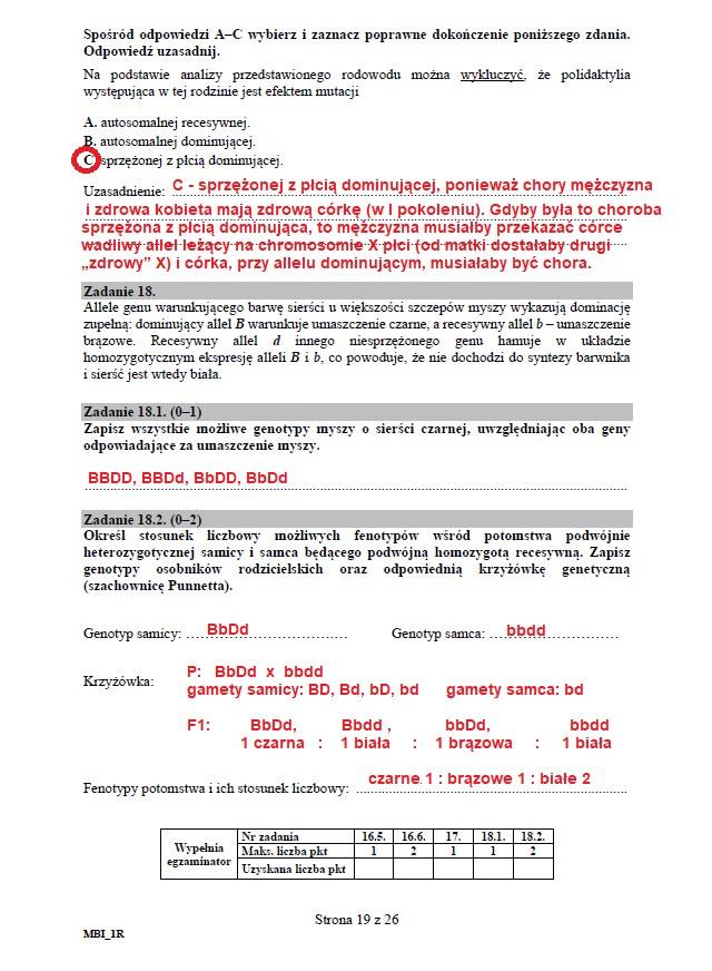 Matura 2020: Biologia - arkusz CKE i odpowiedzi, strona 19 /INTERIA.PL