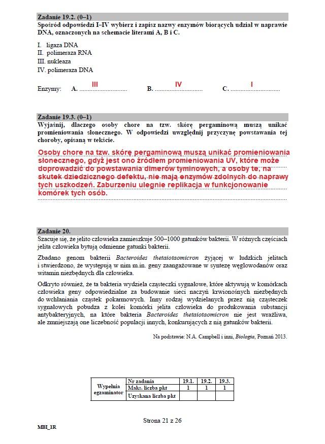 Matura 2020: Biologia - arkusz CKE i odpowiedzi, strona 21 /INTERIA.PL