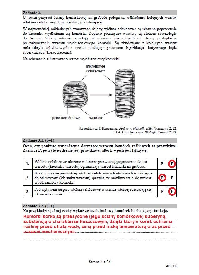 Matura 2020: Biologia - arkusz CKE i odpowiedzi, strona 4 /INTERIA.PL