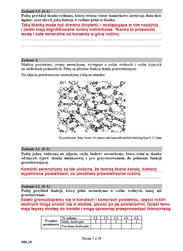 Matura 2020: Biologia - arkusz CKE i odpowiedzi, strona 5 /INTERIA.PL