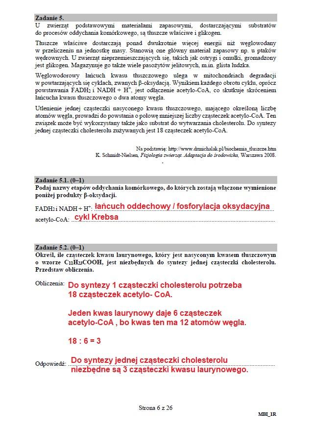 Matura 2020: Biologia - arkusz CKE i odpowiedzi, strona 6 /INTERIA.PL