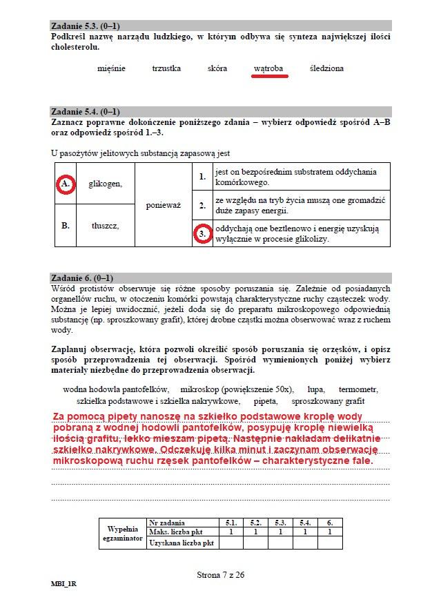 Matura 2020: Biologia - arkusz CKE i odpowiedzi, strona 7 /INTERIA.PL