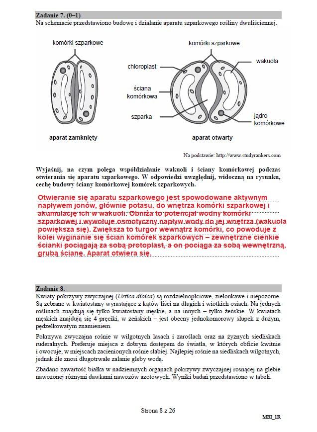 Matura 2020: Biologia - arkusz CKE i odpowiedzi, strona 8 /INTERIA.PL