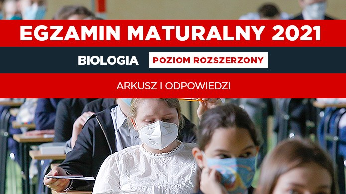 Matura 2021: Biologia. Publikuje arkusz CKE i odpowiedzi; zdjęcie FORUM/Krzysztof Zatycki /INTERIA.PL