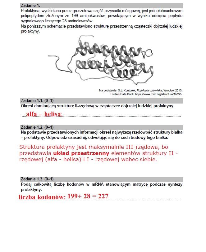 Matura 2021; biologia /INTERIA.PL