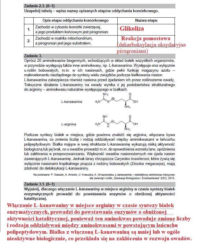 MATURA 2021 z biologii /INTERIA.PL