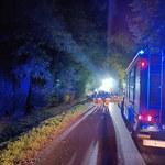 Mazowieckie: Auto uderzyło w drzewo i spłonęło. Nie żyją cztery osoby