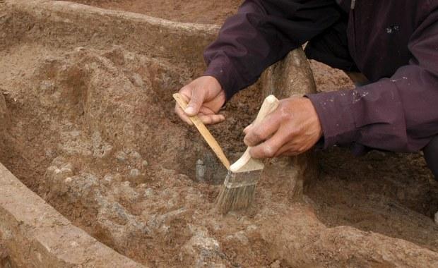 Mazowieckie: W Żelechowie odkryto średniowieczny zamek
