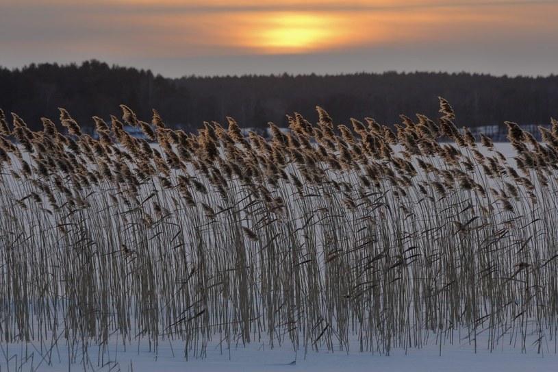 Mazurskie jeziora zaczyna skuwać lód - pierwszy raz tej zimy /Piotr Płaczkowski /Reporter