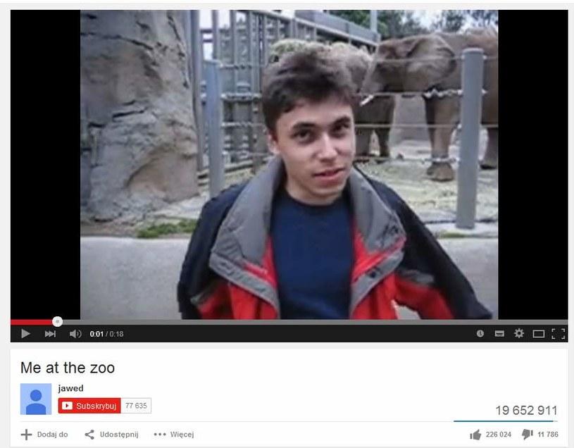 Me at the zoo – pierwsze w historii wideo umieszczone w serwisie You Tube /materiały prasowe