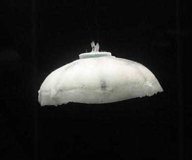 Mechaniczna meduza na usługach Marynarki Wojennej