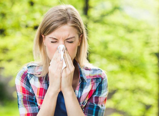 Męczy cię katar? To niejedyny objaw alergii /123RF/PICSEL
