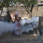 Media: 12-latek pierwszą śmiertelną ofiarą ptasiej grypy w Indiach