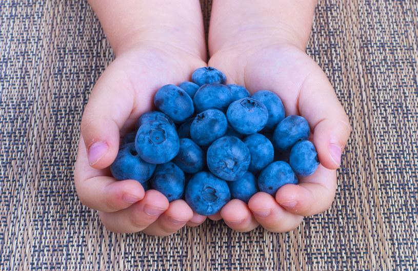 Medycyna ludowa traktowała czarne jagody jak cudowny lek na wiele chorób /123RF/PICSEL