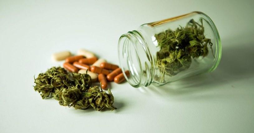 medyczna marihuana /© Photogenica