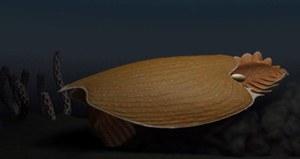 Megadrapieżnik z oceanu. Odkryto zwierzę sprzed pół miliarda lat