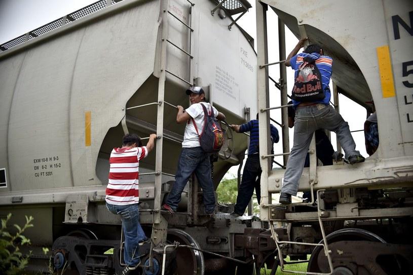 """Meksykanie wspinają się na """"Bestię"""", zwaną także """"pociągiem śmierci"""" /AFP"""