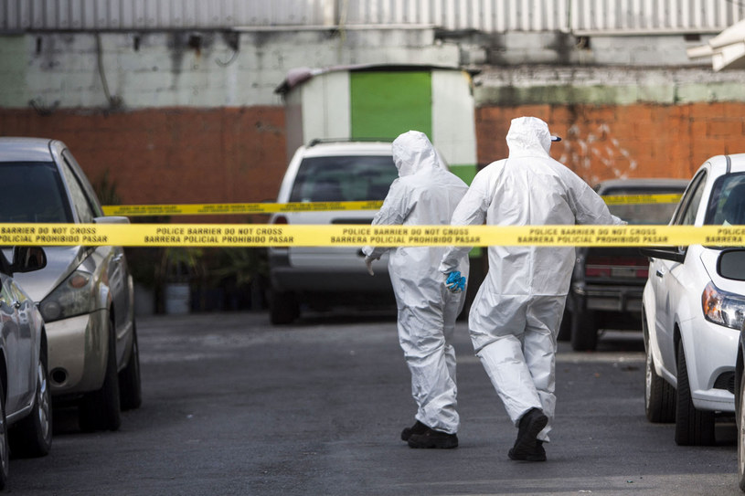 Meksykańscy śledczy: Nie ma dowodów na pobranie organów po śmierci Polaka, zdj. ilustracyjne /JULIO CESAR AGUILAR/AFP /AFP