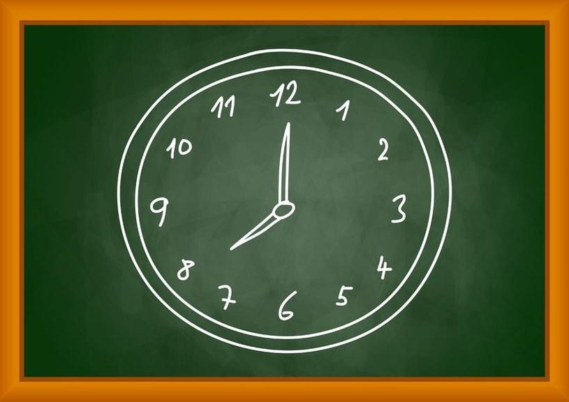 MEN domaga się, aby pedagodzy lepiej ewidencjonowali swój czas pracy /123RF/PICSEL