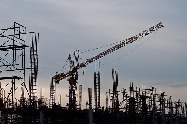Menedżerowie budowlanych bankrutów doskonale zarabiają /©123RF/PICSEL