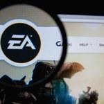 amerykański producent oraz wydawca gier komputerowych i wideo