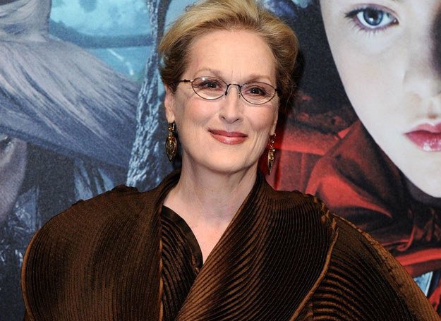 Meryl Streep /Rex Features /East News