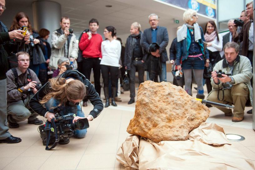 Meteoryt odkryty w 2012 r. (arch.) /Marek Lapis /Agencja FORUM