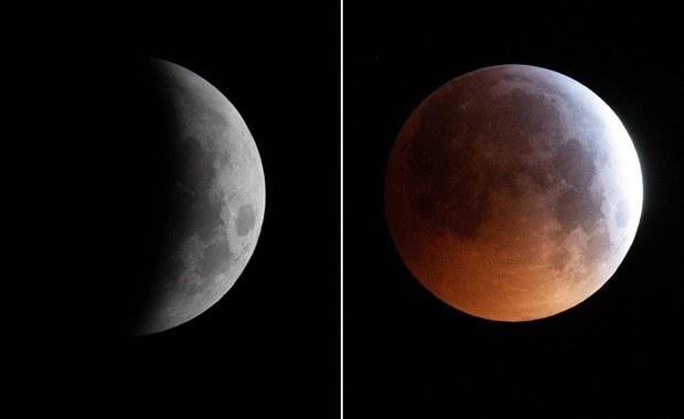 Meteoryt uderzył w Księżyc podczas zaćmienia. Jest nagranie