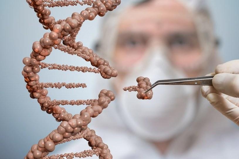 Metoda edycji genów CRISPR daje nadzieję na wyleczenie fenyloketonurii /123RF/PICSEL